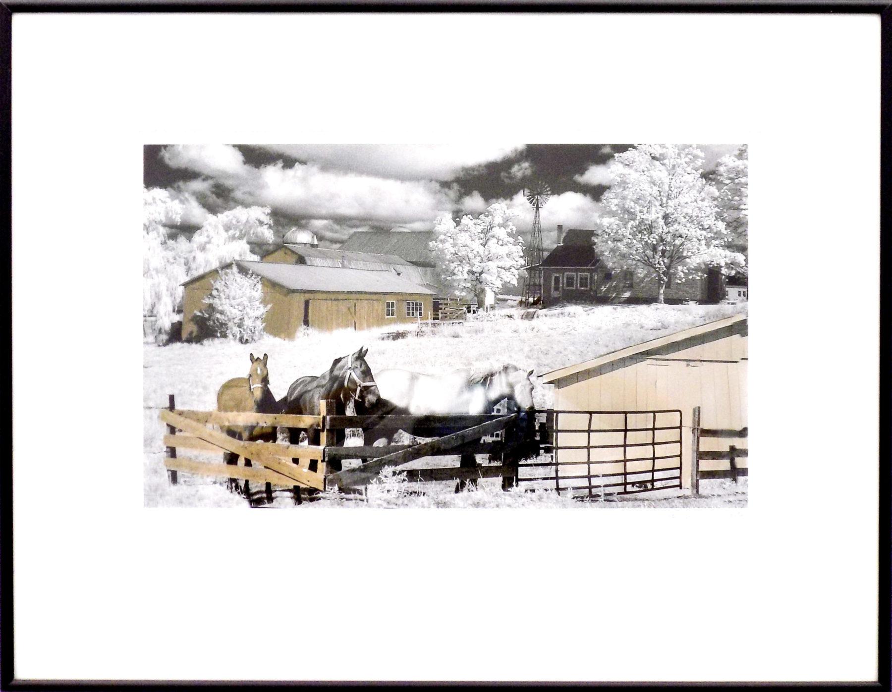 Amish Farm – Portland, NY